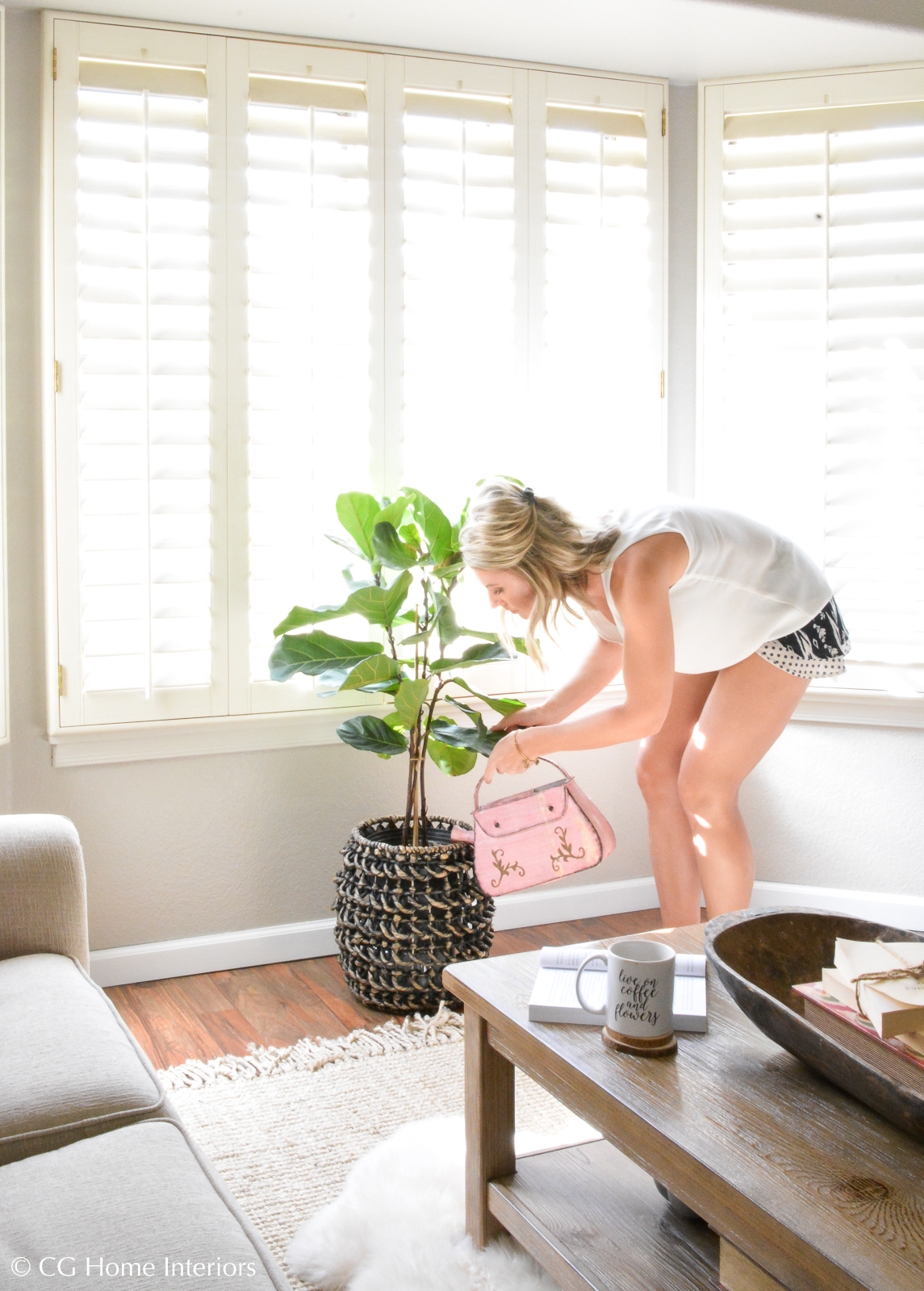5 tips for a thriving Fiddle Leaf Fig Tree