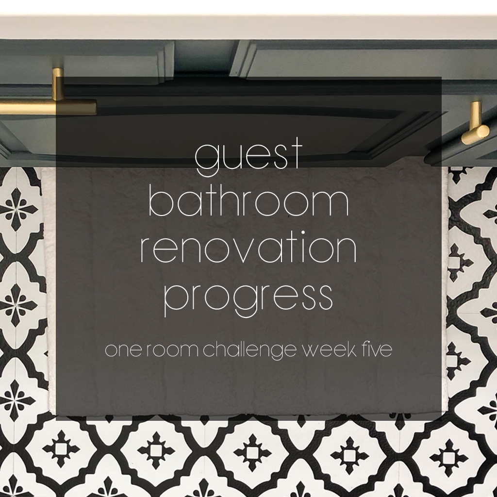 Guest Bathroom Renovation Progress – Affordable Flooring